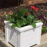 Making a flower box
